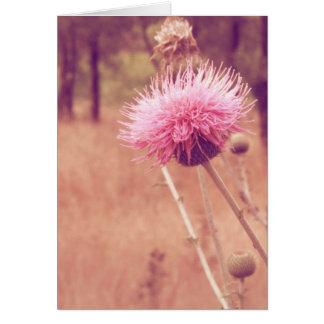 Espacio en blanco precioso de la foto de la tarjeta de felicitación