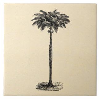 Espacio en blanco tropical de la plantilla de la azulejo cuadrado grande