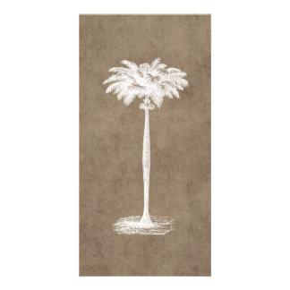 Espacio en blanco tropical de la plantilla de la p plantilla para tarjeta de foto