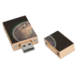 Espacio temático memoria USB 2.0 de madera