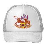 España 2010 Grunge Toro soccer ball gifts Hat