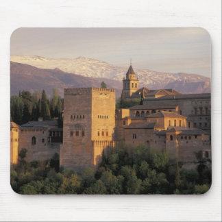 España, Granada, Andalucía Alhambra, Tapetes De Raton