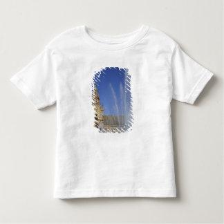 España, Sevilla, fuente de Andalucía y adornado T Shirts