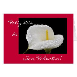 Español: El día de San Valentín/Dia de San Valenti Tarjetas