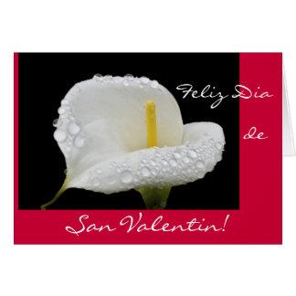Español: El día de San Valentín/San Valentin Tarjetón