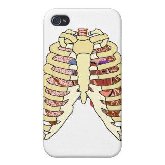 Espec. del corazón de los pulmones de las costilla iPhone 4 carcasas