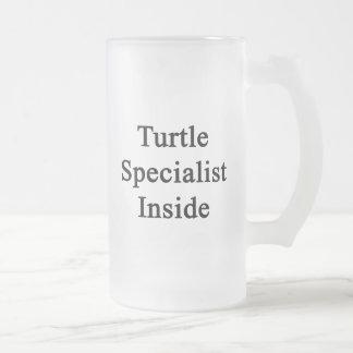 Especialista de la tortuga dentro taza de cristal