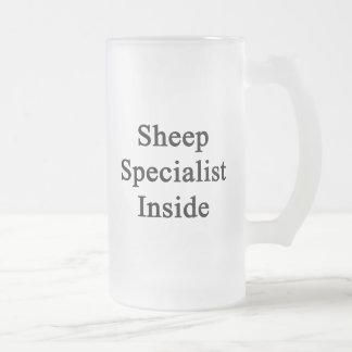 Especialista de las ovejas dentro taza de cristal