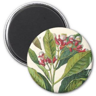 Especias de las hierbas de la comida del vintage, imán redondo 5 cm