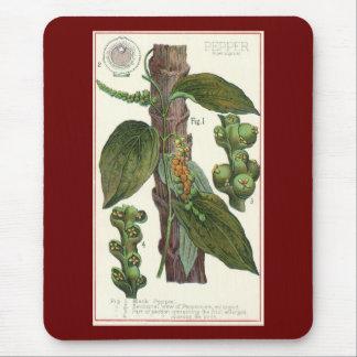 Especias de las hierbas de la comida del vintage,  alfombrillas de ratón