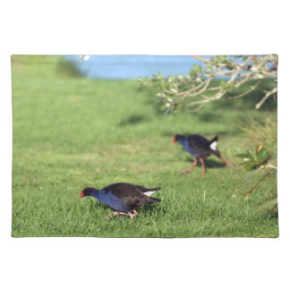 Especie nativa del pájaro del pukeko de Nueva Zela Manteles Individuales