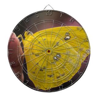 Espejismo amarillo tabla dardos