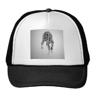 Espejo animal abstracto del tigre gorro de camionero