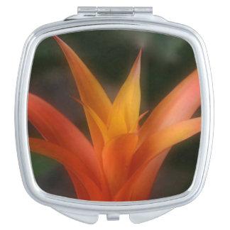 Espejo compacto de Bromeliad que brilla