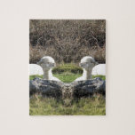 Espejo de la alpaca puzzles con fotos
