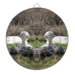 Espejo de la alpaca tablero dardos