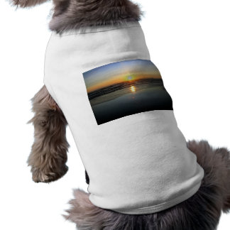 Espejo de la playa playera sin mangas para perro