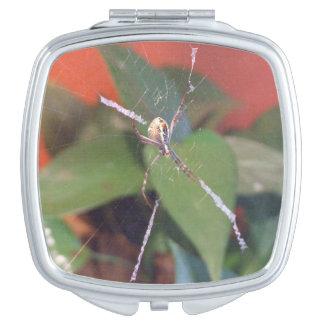 Espejo del acuerdo de la araña del orbe espejos maquillaje