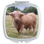Espejo del acuerdo de la vaca de la montaña espejos compactos