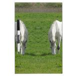 Espejo del caballo tablero blanco