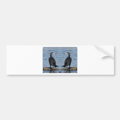 Espejo del cormorán etiqueta de parachoque