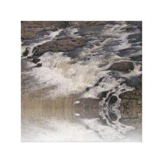 Espejo en los Rapids Impresión En Lienzo