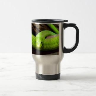 espera de la serpiente de la mamba verde para el a taza de café