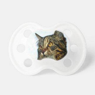espera del gatito del gato para el amor de la mamá chupetes