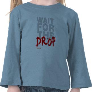 Espera para el descenso DJ Camiseta