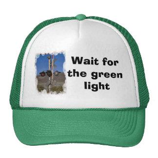 Espera para la luz verde gorro de camionero