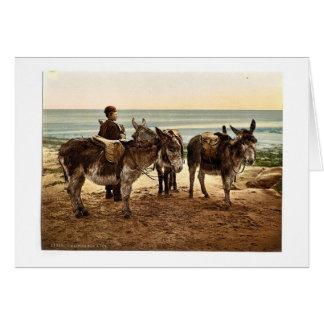 Esperando un trabajo (burros), Inglaterra Photochr Tarjeta