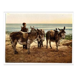 Esperando un trabajo (burros), Inglaterra Photochr Tarjetas Postales