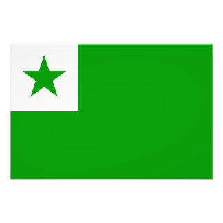 Esperanto - bandera de Esperantist Fotografías