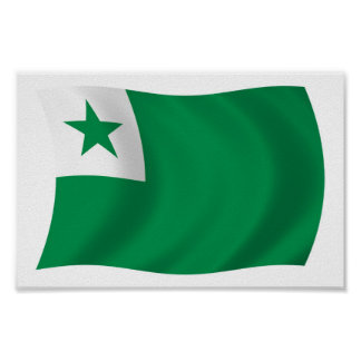 Esperanto Flag Poster Print