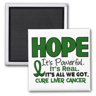 ESPERANZA 1 del cáncer de hígado Imán Cuadrado