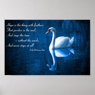 Esperanza, cisne blanco en el poster de las aguas