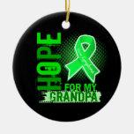 Esperanza de mi linfoma del abuelo ornatos