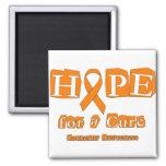 Esperanza de una curación - leucemia iman de nevera