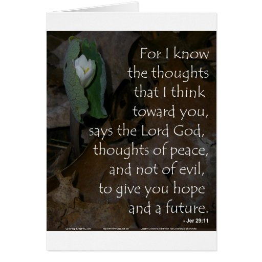 Esperanza del 29:11 de Jeremiah del futuro Tarjetas