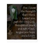 Esperanza del 29:11 de Jeremiah del futuro Tarjetas Postales