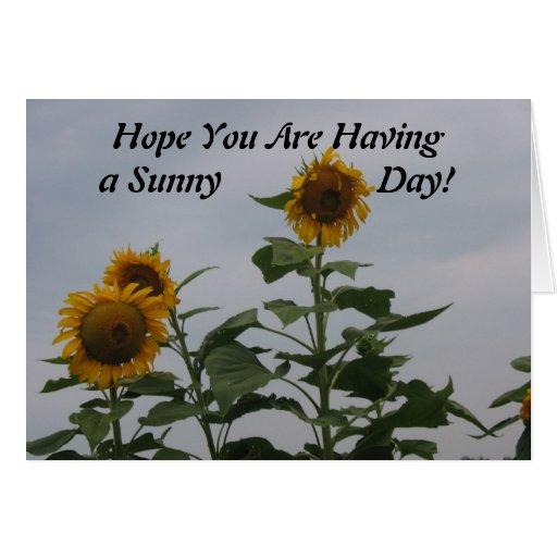 ¡Esperanza usted está teniendo un día soleado! Tar Tarjeta De Felicitación
