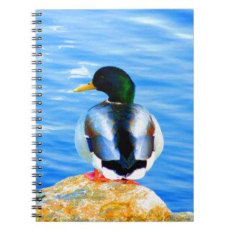 Espere el pájaro de agua del pato de la paz y de l