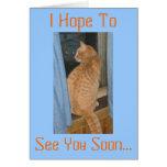 Espero a, le veo pronto… felicitacion
