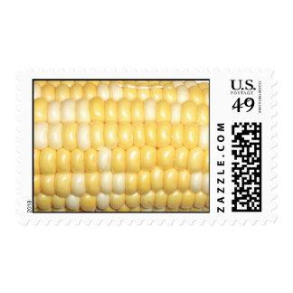 Espiga de sello del trigo