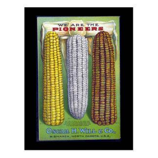 Espigas del vintage de anuncio del trigo - postal