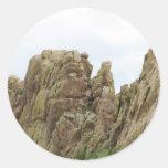 Espina dorsal Colorado de los diablos Etiqueta Redonda