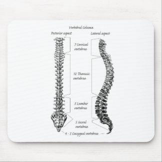 Espina dorsal humana alfombrilla de raton