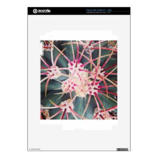 Espinas dorsales del cactus calcomanía para el iPad 2