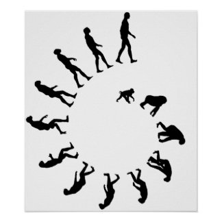 Espiral de la evolución poster