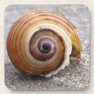 Espirales de la naturaleza posavaso